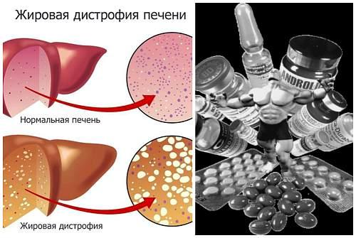 влияние на печень
