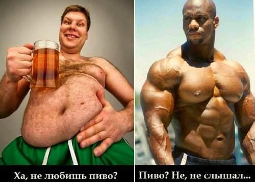 толстяк и качок