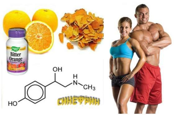 Synephrine в бодибилдинге