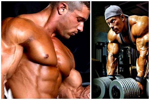 рост мышц для постройки тела