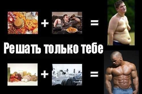 Образы жизни