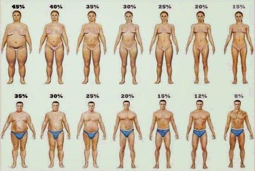 разный процент содержания жира
