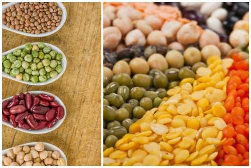 разнообразие продуктов