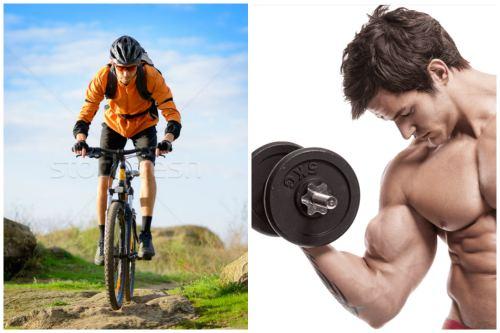 Велоспорт в горной местности и бодибилдинг