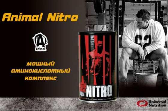 Animal Nitro от Universal Nutrition