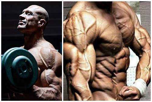 для силы и мышц