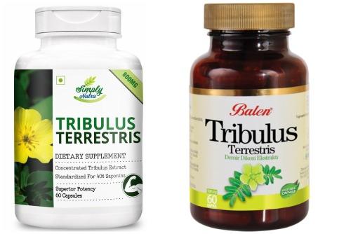 аптечный tribulus terrestris