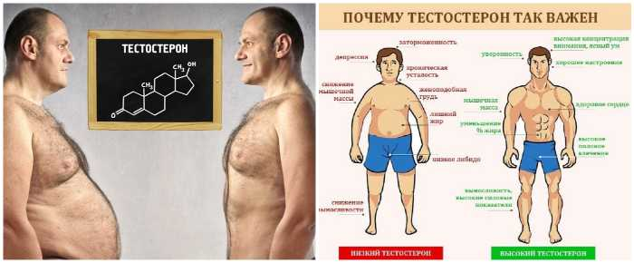 Признаки дефицита тестостерона
